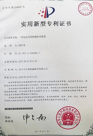 一种高压釜用机械密封装置专利证书