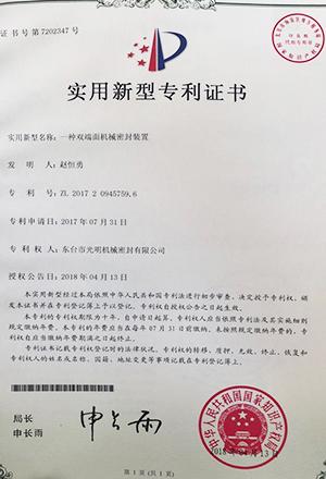 一种双端面机械密封装置专利证书